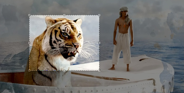 Mac OSX Preview Cropping Life Of Pi