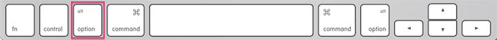 The Option Key On The Mac Keyboard